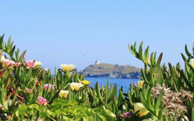 Pensez à passer d'inoubliables vacances sous le soleil méditerranéen